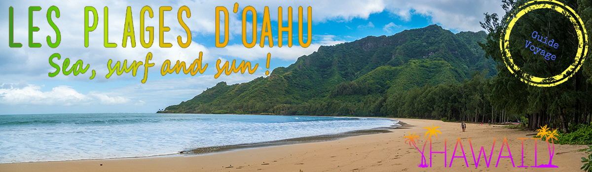 canva hawaii
