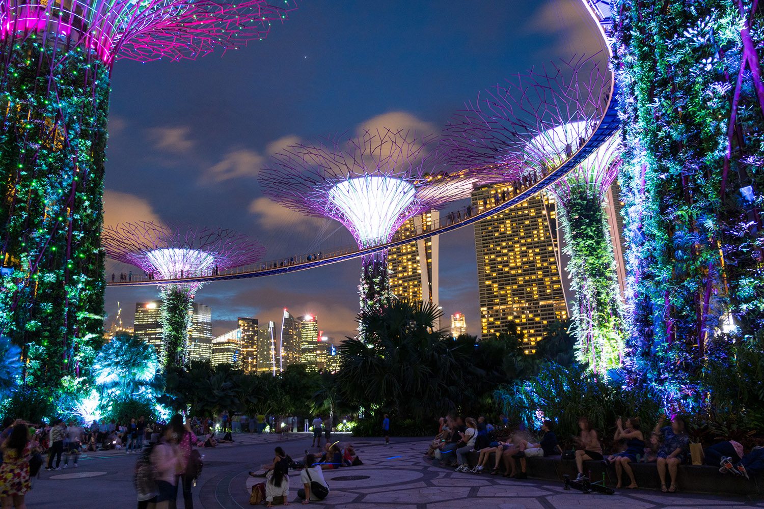 super trees grove singapour