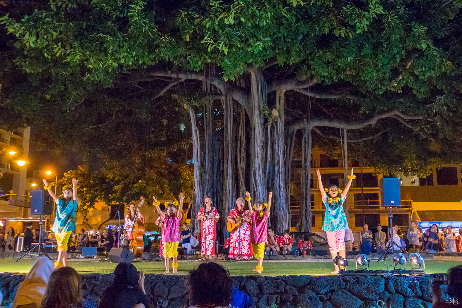hulan dance banyan tree hawai